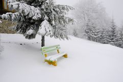 Ljus vinterdag i bergen arkivbilder