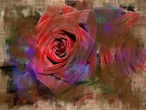 Ljus vykort med rosor Royaltyfria Bilder