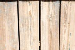 Ljus wood plankatextur Royaltyfri Foto