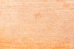 Ljus Wood textur Royaltyfri Bild