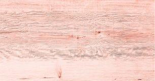 Ljus wood texturbakgrund, vita wood plankor Gammal grunge tvättade trä, målad bästa sikt för trätabellmodell Royaltyfri Bild