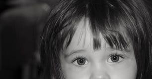 ljusa ögon Fotografering för Bildbyråer