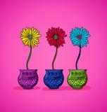 Ljusa blommor i krukor Fotografering för Bildbyråer