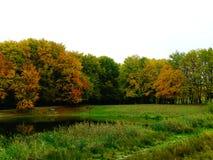Ljusa färger av hösten parkerar Arkivbilder