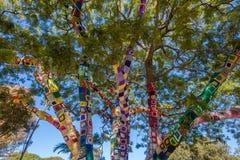 Ljusa färger för filtträdfilialer Fotografering för Bildbyråer
