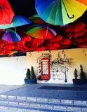 Ljusa färger för paraplyer Arkivbild