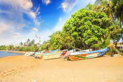 Ljusa fartyg på den tropiska stranden av Bentota, Sri Lanka Fotografering för Bildbyråer