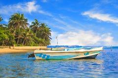 Ljusa fartyg på den tropiska stranden av Bentota, Sri Lanka Royaltyfria Bilder