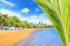Ljusa fartyg på den tropiska stranden av Bentota, Sri Lanka på en solig dag Royaltyfria Bilder