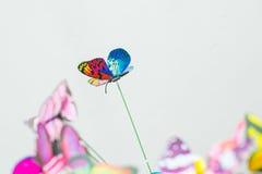 ljusa fjärilar arkivbild