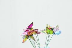 ljusa fjärilar arkivfoton