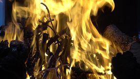 Ljusa flammor när brinnande trä på gallret arkivfilmer