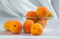 Ljusa gula och orange auricos på en vit bordduk Royaltyfria Foton