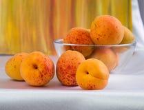 Ljusa gula och orange auricos på en vit bordduk Fotografering för Bildbyråer