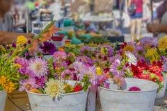 Ljusa härliga blommor i hinkar av vatten i fokus i förgrund med suddigt - upptagen utomhus- marknad för bokeh som ut bakom sträck arkivfoto