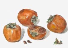 Ljusa mogna vitaminfrukter stock illustrationer