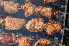 Ljusa nya klara kebaber på steknålar över de förberedda kolen på Royaltyfri Fotografi