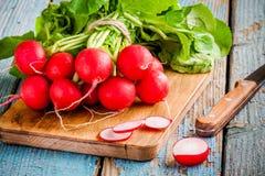 Ljusa nya organiska rädisor med skivor på skärbräda Royaltyfri Foto