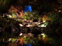 Ljusa reflexioner i botaniska trädgården Arkivfoton