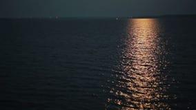 Ljusa reflexioner i vattnet på natten stock video