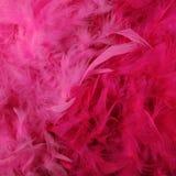 Ljusa rosa fjäderboas Fotografering för Bildbyråer