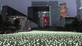 Ljusa Rose Garden i Hong Kong stock video