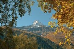 Ljusa sidor på en bakgrund av steniga snö-korkade berg Arkivfoton