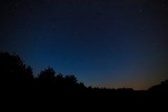 ljusa stjärnor för nattsky Mot bakgrunden av trädgalandet Royaltyfri Fotografi