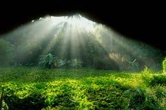 ljusa strålar Royaltyfri Fotografi