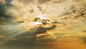 Ljusa strålar av solen Royaltyfria Bilder