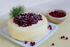 Ljusbrun kaka för citron med tranbär Arkivbilder