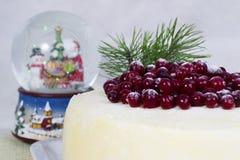 Ljusbrun kaka för citron med tranbär Arkivfoton