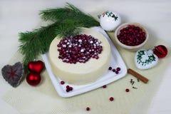 Ljusbrun kaka för citron med tranbär Royaltyfri Fotografi