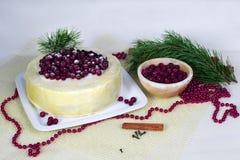 Ljusbrun kaka för citron med tranbär Royaltyfria Foton