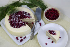 Ljusbrun kaka för citron med tranbär Arkivfoto