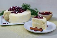 Ljusbrun kaka för citron med tranbär Royaltyfri Foto