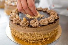 Ljusbrun kaka för danande royaltyfri foto