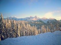 Ljuset, bergen och träden Fotografering för Bildbyråer