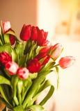 Ljusna upp din dag med blommor arkivbild
