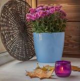 Ljusstake med en stearinljus på en bakgrund av buskechrysanthemuen Royaltyfria Bilder