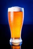 ljust öl i frostigt exponeringsglas över mörker - blå bakgrund arkivbilder