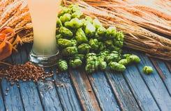 Ljust öl, malt, flygturer, korn gå i ax på tabellen royaltyfri fotografi