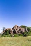 Ljust blå himmel av savann serengeti Arkivbild