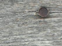 Ljust - brun träyttersida, djupt träkorn, torrt gammalt trä, horisontalband royaltyfri foto