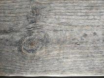 Ljust - brun tr?yttersida, djupt tr?korn, torrt gammalt tr?, horisontalband arkivbild