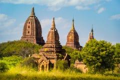 Ljust burma för Myanmar hedniskt kungarike för bagan tempel lopp Arkivbilder