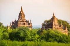 Ljust burma för Myanmar hedniskt kungarike för bagan tempel lopp Arkivfoton
