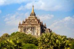 Ljust burma för Myanmar hedniskt kungarike för bagan tempel lopp Royaltyfri Fotografi
