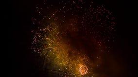 Ljust färgrika fyrverkerier som skiner i natten arkivfilmer