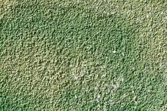 Ljust - grön grov murbruk royaltyfri foto